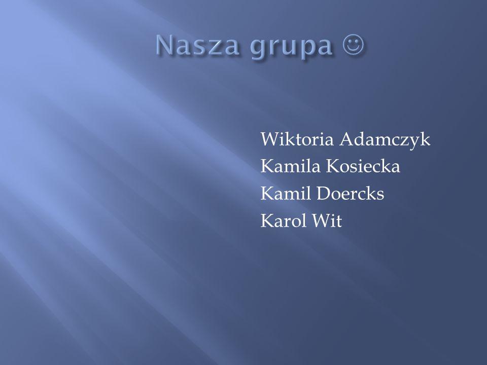 Nasza grupa  Wiktoria Adamczyk Kamila Kosiecka Kamil Doercks Karol Wit