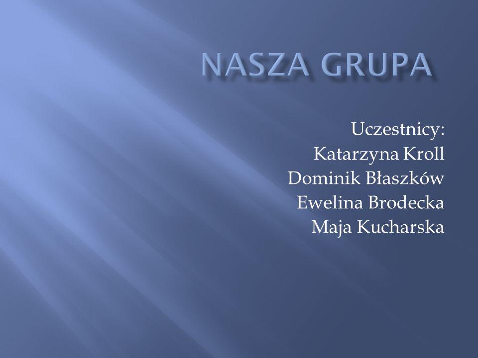 Nasza grupa Uczestnicy: Katarzyna Kroll Dominik Błaszków