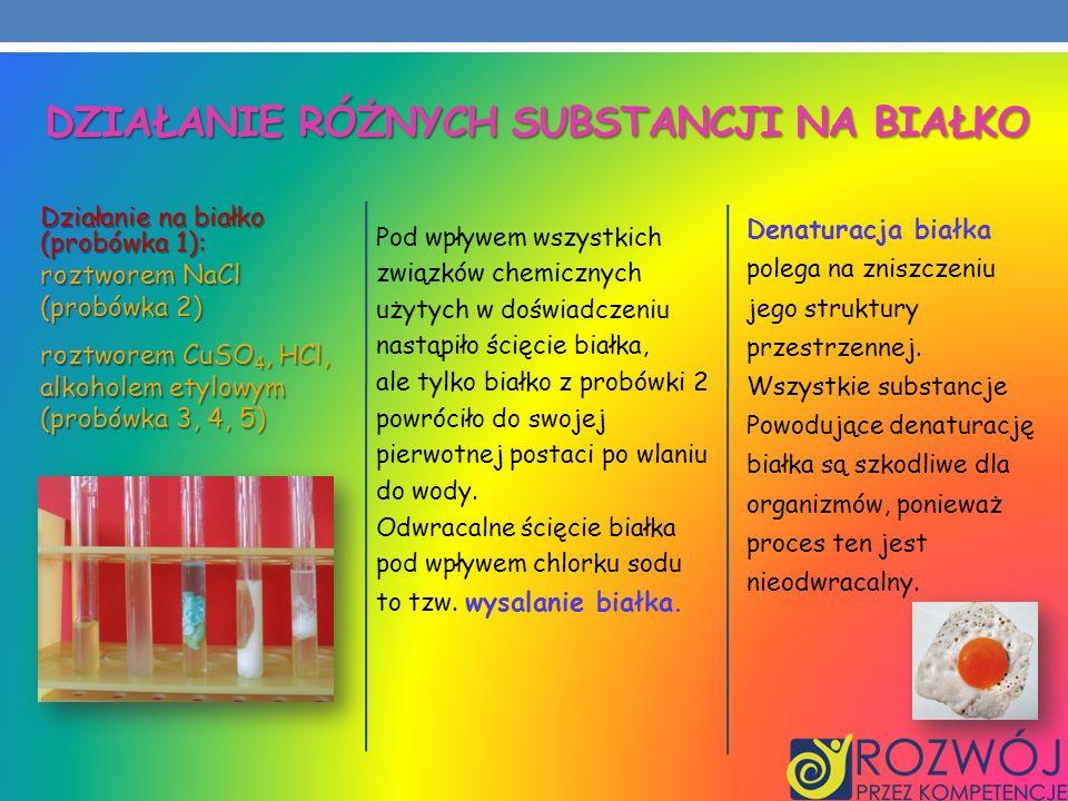Działanie różnych substancji na białko