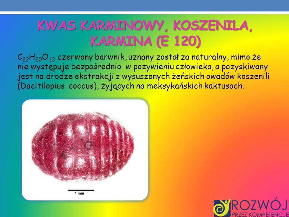 Kwas karminowy, koszenila, karmina (E 120)
