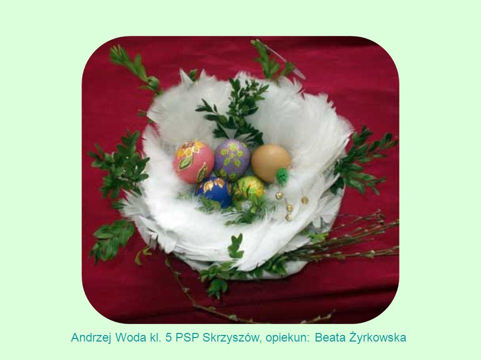 Andrzej Woda kl. 5 PSP Skrzyszów, opiekun: Beata Żyrkowska