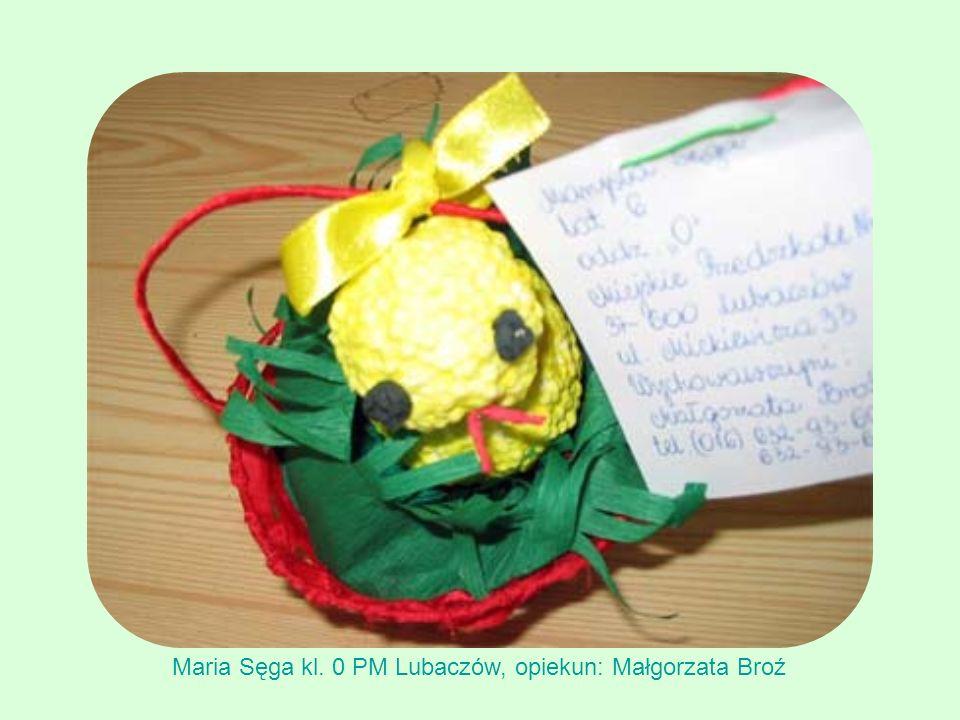 Maria Sęga kl. 0 PM Lubaczów, opiekun: Małgorzata Broź