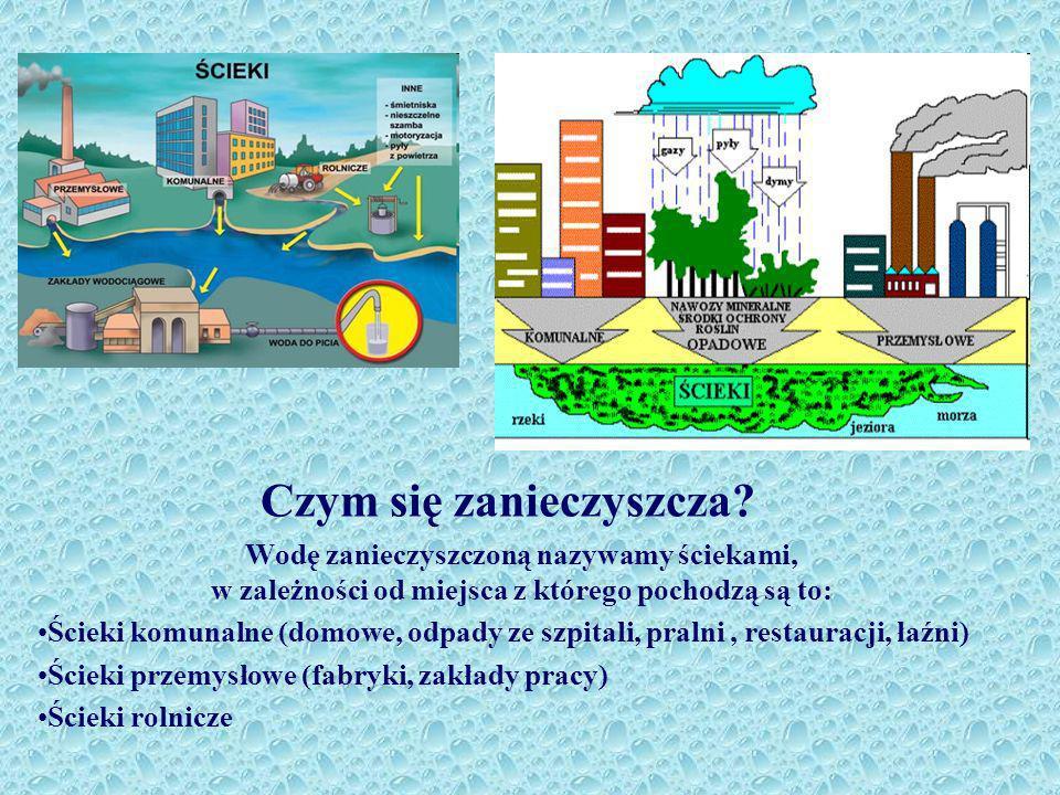 Czym się zanieczyszcza