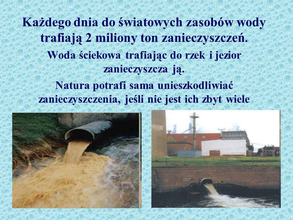 Woda ściekowa trafiając do rzek i jezior zanieczyszcza ją.