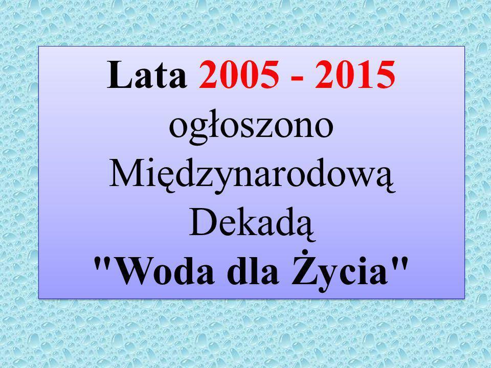 Lata 2005 - 2015 ogłoszono Międzynarodową Dekadą