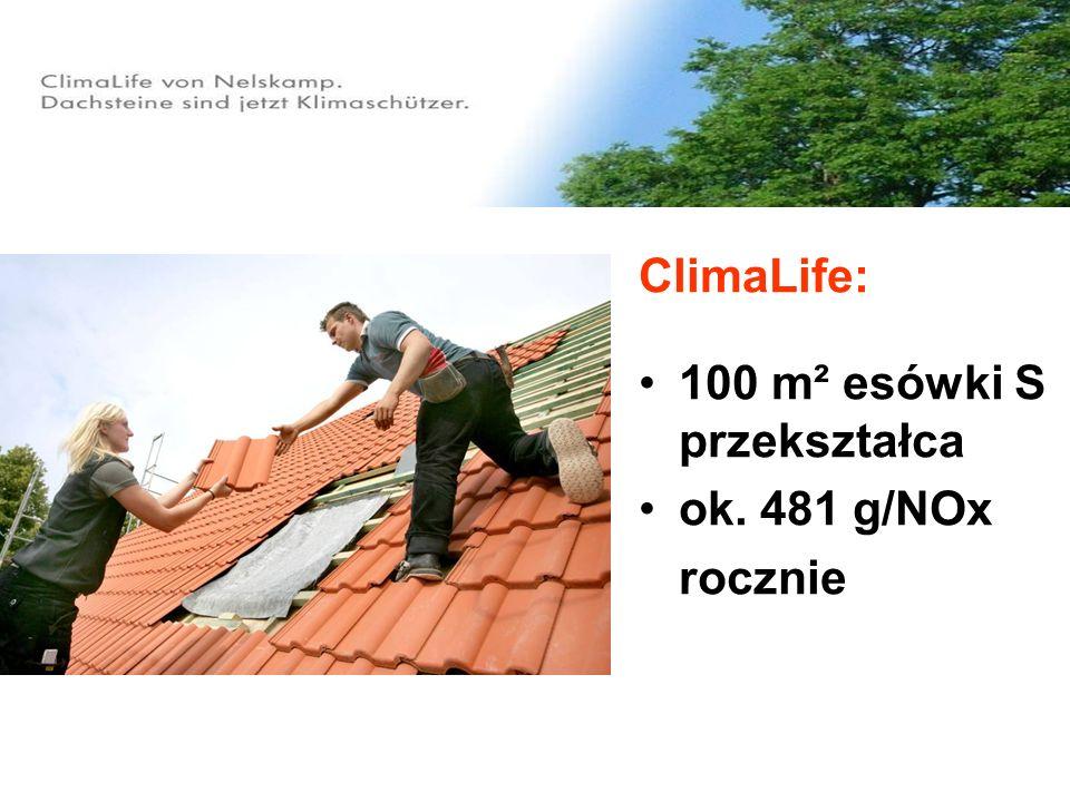 100 m² esówki S przekształca ok. 481 g/NOx rocznie