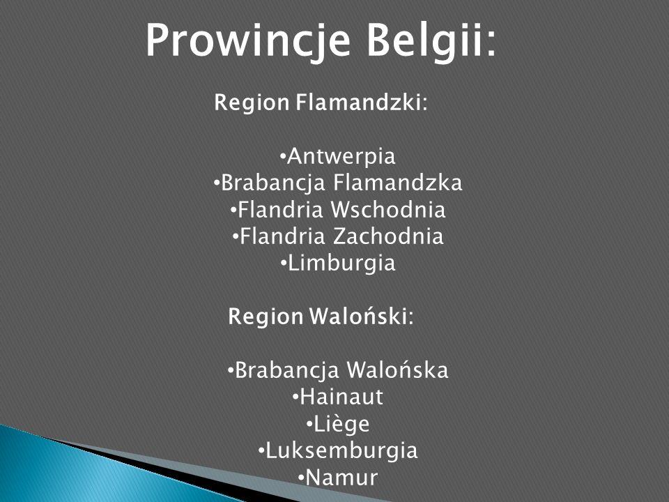 Prowincje Belgii: Region Flamandzki: Antwerpia Brabancja Flamandzka