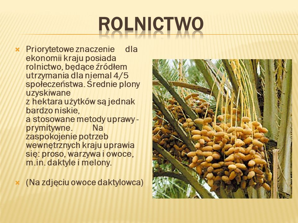 Rolnictwo