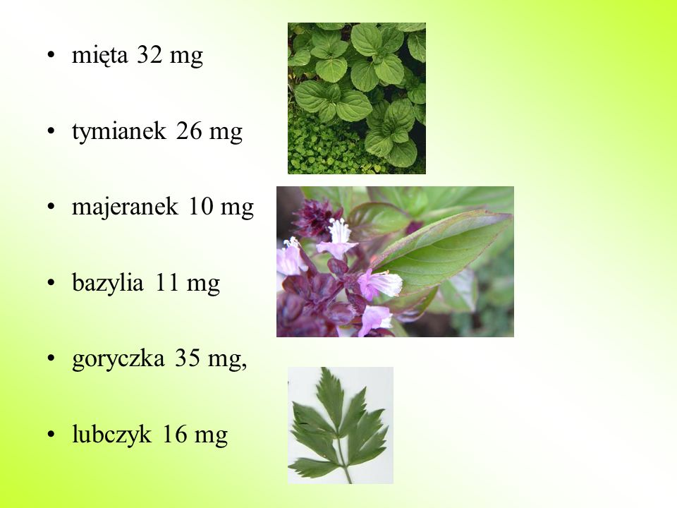 mięta 32 mg tymianek 26 mg majeranek 10 mg bazylia 11 mg goryczka 35 mg, lubczyk 16 mg