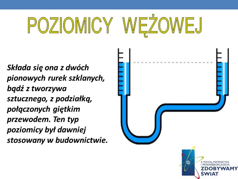 POZIOMICY WĘŻOWEJ