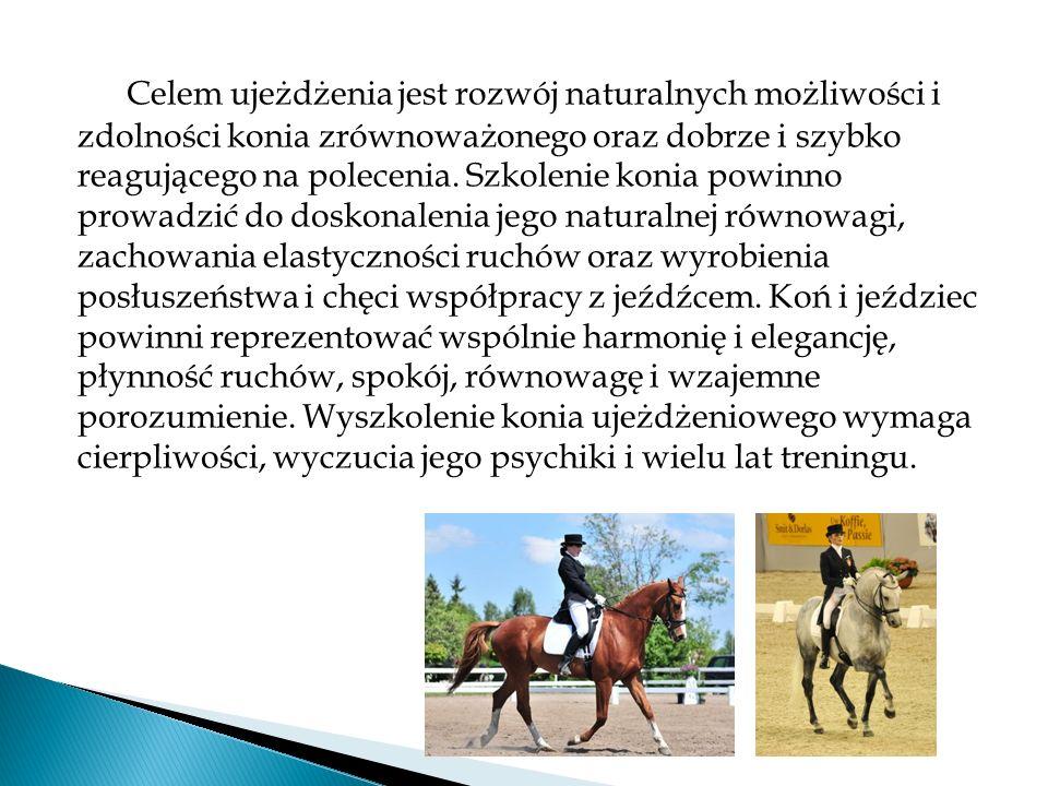 Celem ujeżdżenia jest rozwój naturalnych możliwości i zdolności konia zrównoważonego oraz dobrze i szybko reagującego na polecenia.