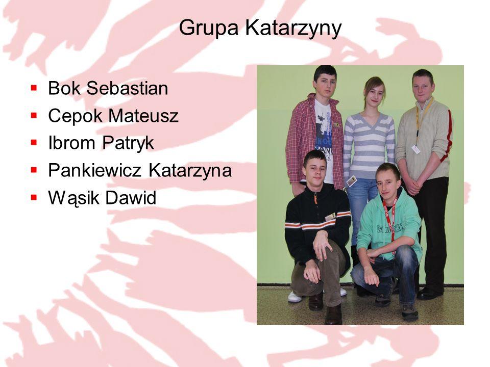 Grupa Katarzyny Bok Sebastian Cepok Mateusz Ibrom Patryk