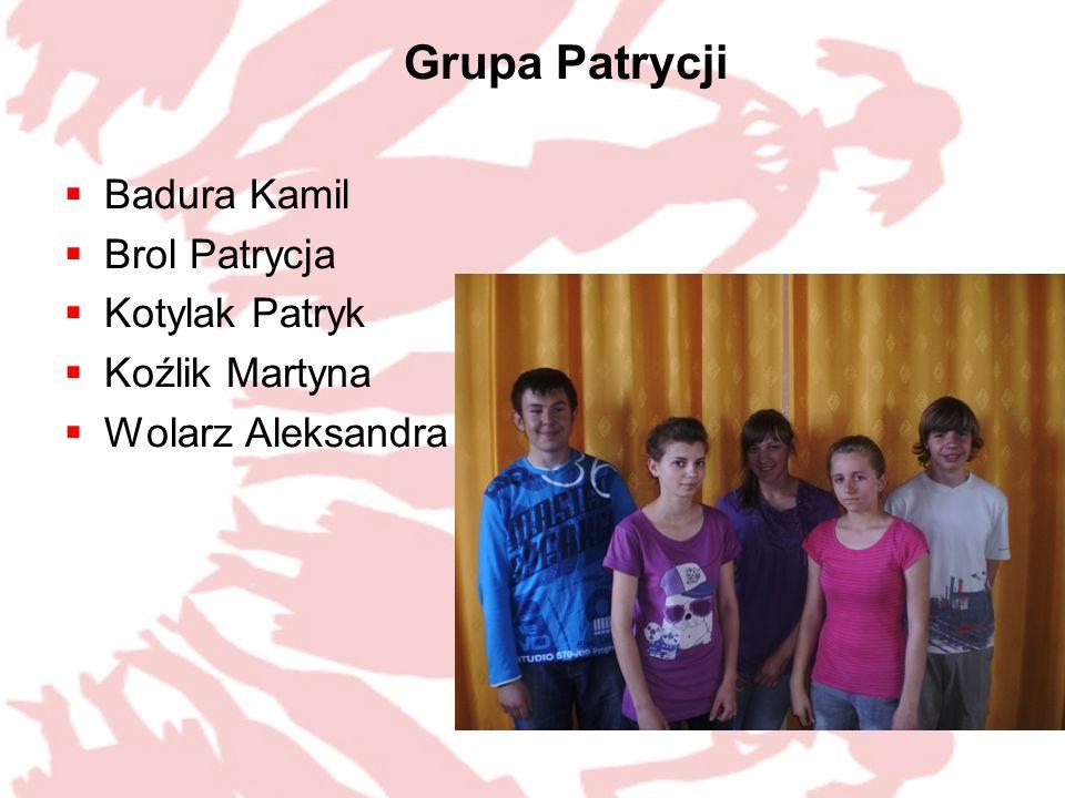Grupa Patrycji Badura Kamil Brol Patrycja Kotylak Patryk