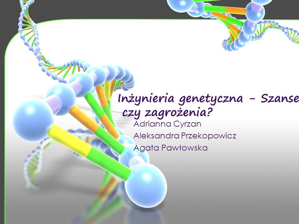 Inżynieria genetyczna - Szanse czy zagrożenia