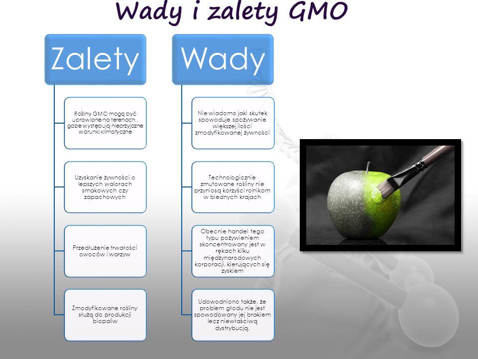 Wady i zalety GMO Zalety. Rośliny GMO mogą być uprawiane na terenach , gdzie występują nieprzyjazne warunki klimatyczne.