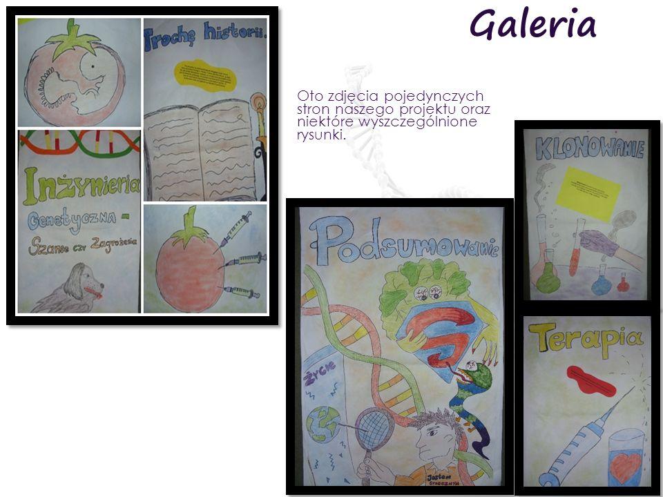 Galeria Oto zdjęcia pojedynczych stron naszego projektu oraz niektóre wyszczególnione rysunki.