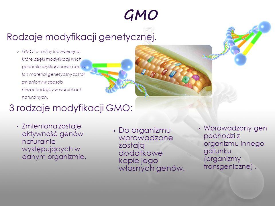 GMO Rodzaje modyfikacji genetycznej. 3 rodzaje modyfikacji GMO: