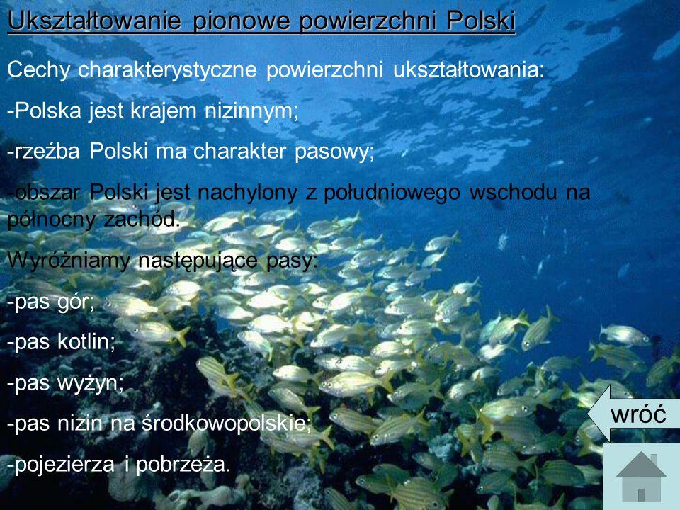 Ukształtowanie pionowe powierzchni Polski