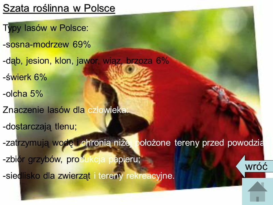 Szata roślinna w Polsce