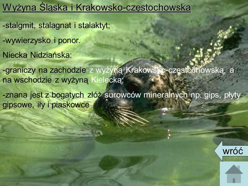Wyżyna Śląska i Krakowsko-częstochowska