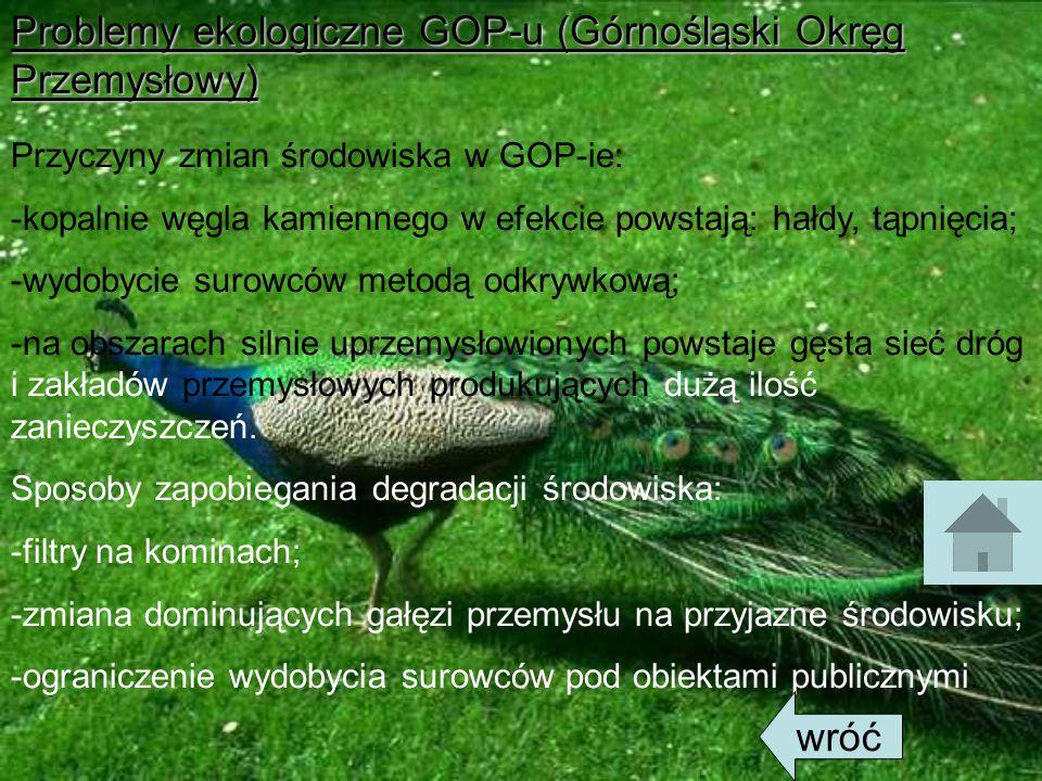 Problemy ekologiczne GOP-u (Górnośląski Okręg Przemysłowy)