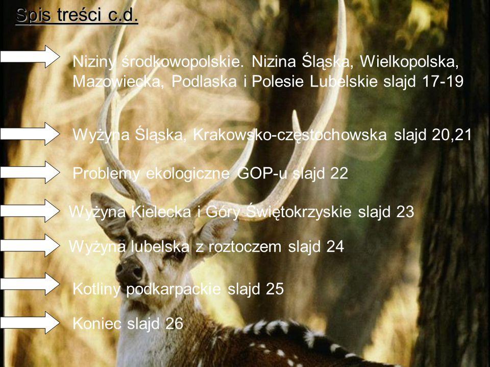 Spis treści c.d. Niziny środkowopolskie. Nizina Śląska, Wielkopolska, Mazowiecka, Podlaska i Polesie Lubelskie slajd 17-19.