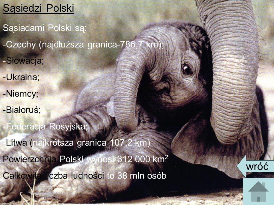 Sąsiedzi Polski wróć Sąsiadami Polski są: