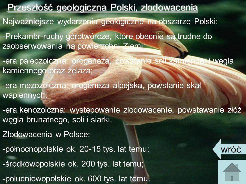 Przeszłość geologiczna Polski, zlodowacenia