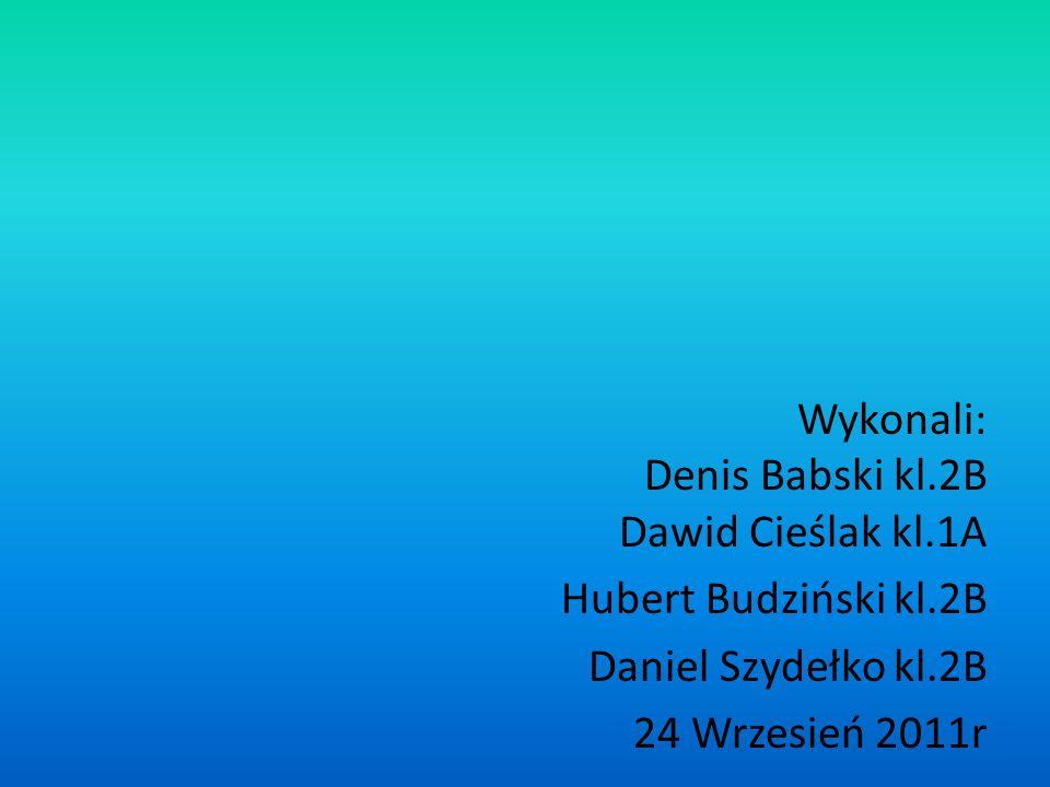 Wykonali: Denis Babski kl. 2B Dawid Cieślak kl. 1A Hubert Budziński kl