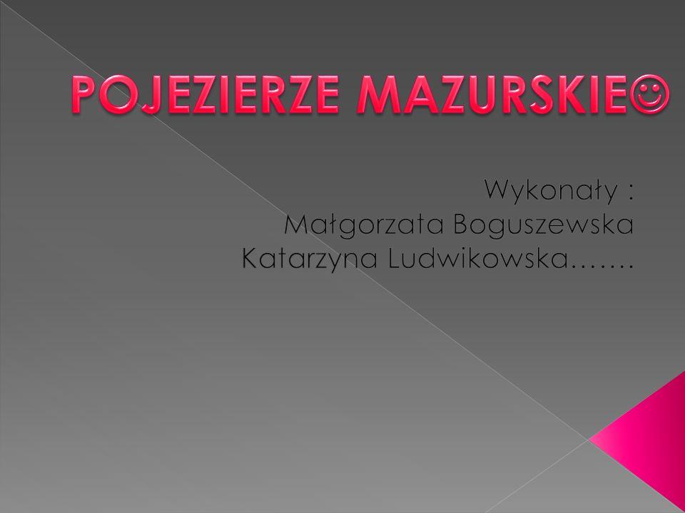 Wykonały : Małgorzata Boguszewska Katarzyna Ludwikowska…….