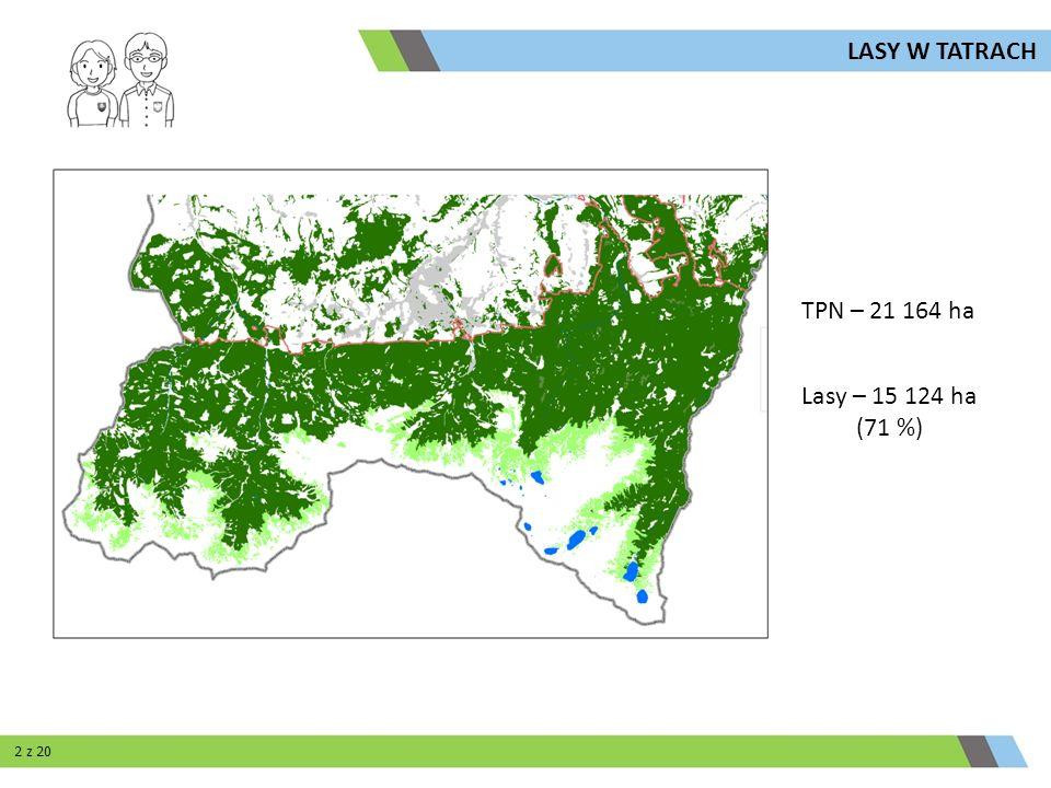 LASY W TATRACH TPN – 21 164 ha Lasy – 15 124 ha (71 %) 2 z 20