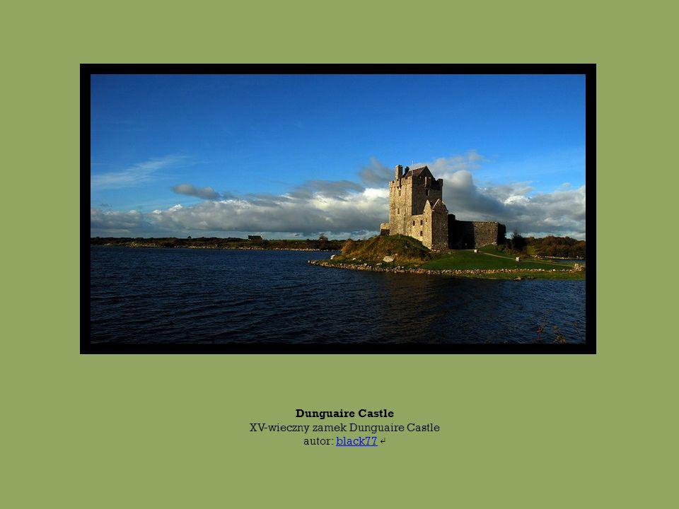 Dunguaire Castle XV-wieczny zamek Dunguaire Castle autor: black77 ↵