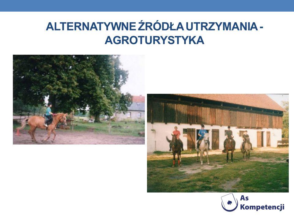 Alternatywne źródła utrzymania - agroturystyka