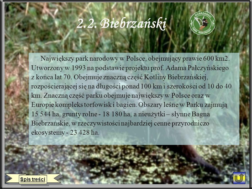 2.2. Biebrzański Największy park narodowy w Polsce, obejmujący prawie 600 km2. Utworzony w 1993 na podstawie projektu prof. Adama Pałczyńskiego.