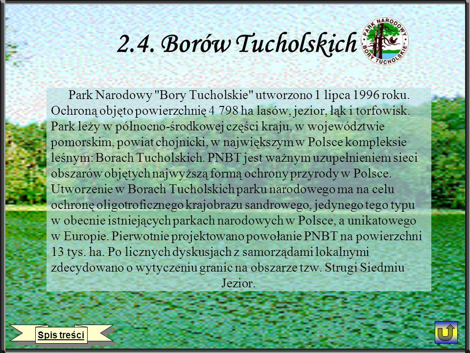 2.4. Borów Tucholskich Park Narodowy Bory Tucholskie utworzono 1 lipca 1996 roku.