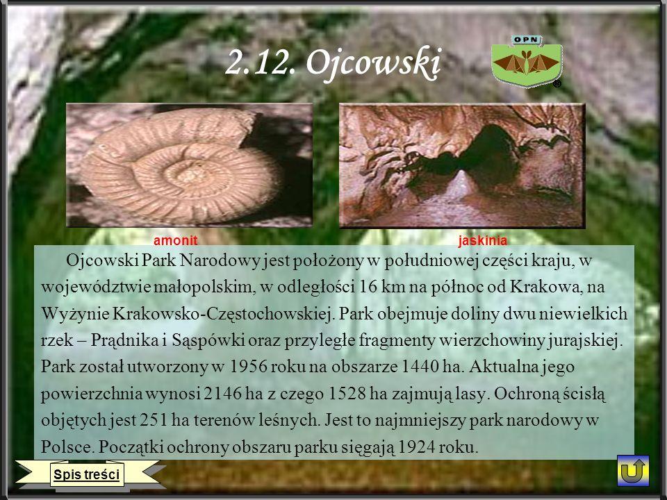 2.12. Ojcowski amonit. jaskinia. Ojcowski Park Narodowy jest położony w południowej części kraju, w.