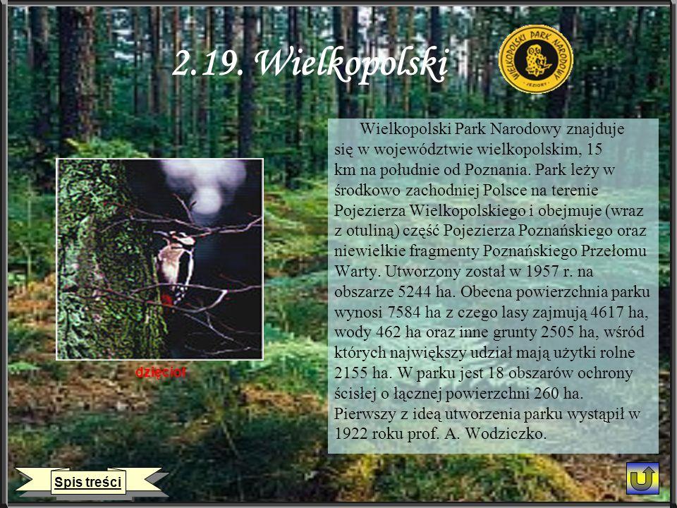 2.19. Wielkopolski Wielkopolski Park Narodowy znajduje