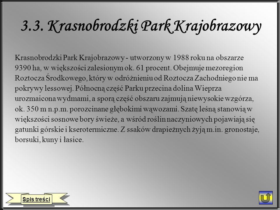 3.3. Krasnobrodzki Park Krajobrazowy