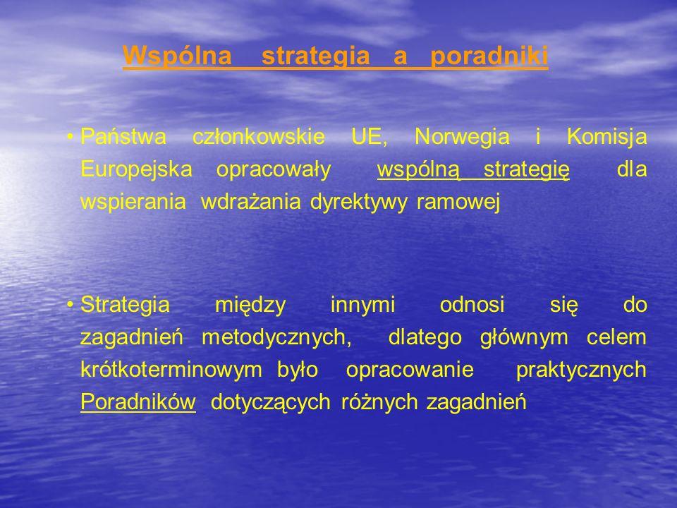 Wspólna strategia a poradniki