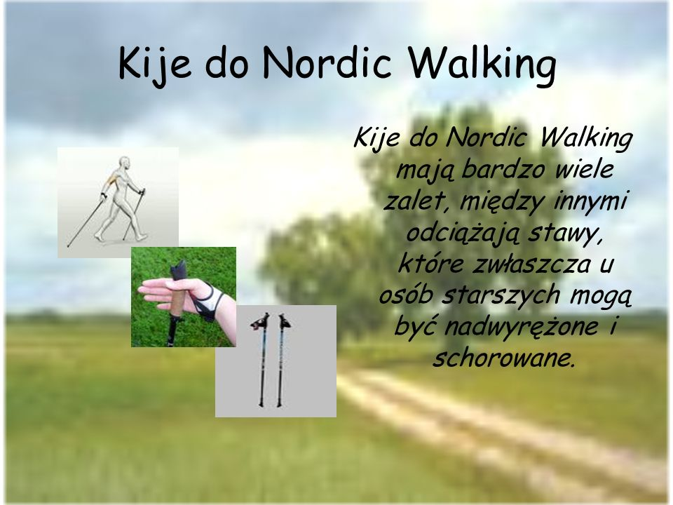 Kije do Nordic Walking