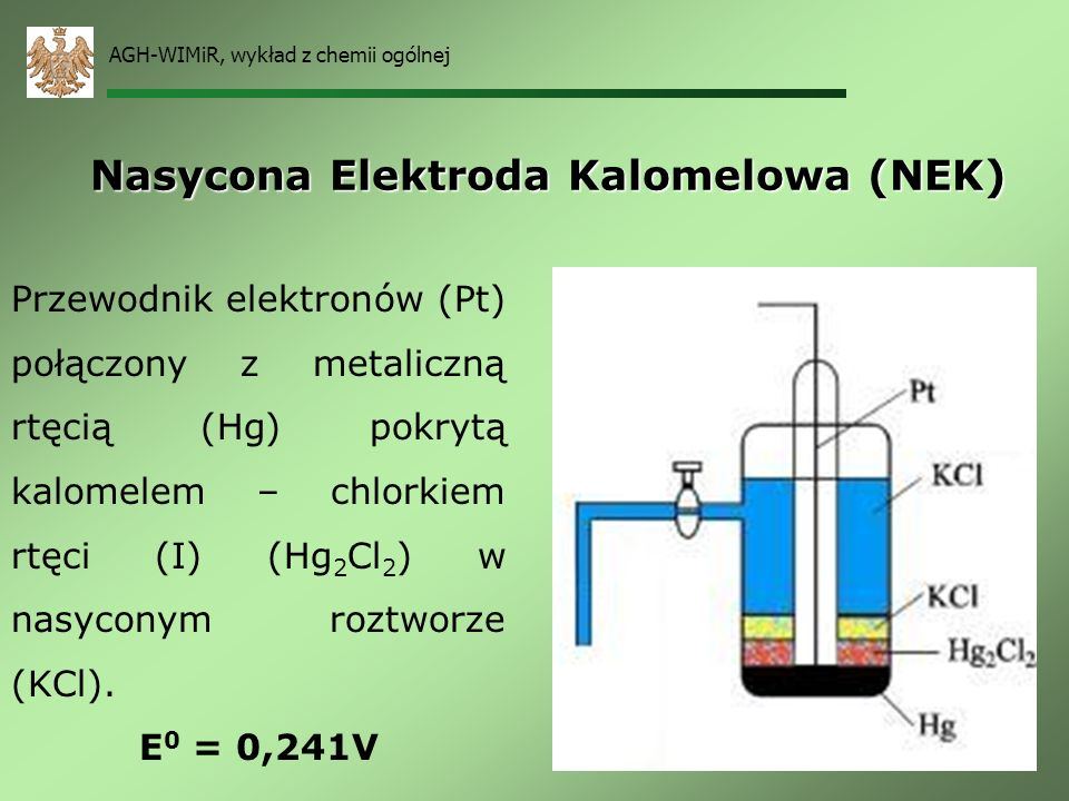 Nasycona Elektroda Kalomelowa (NEK)