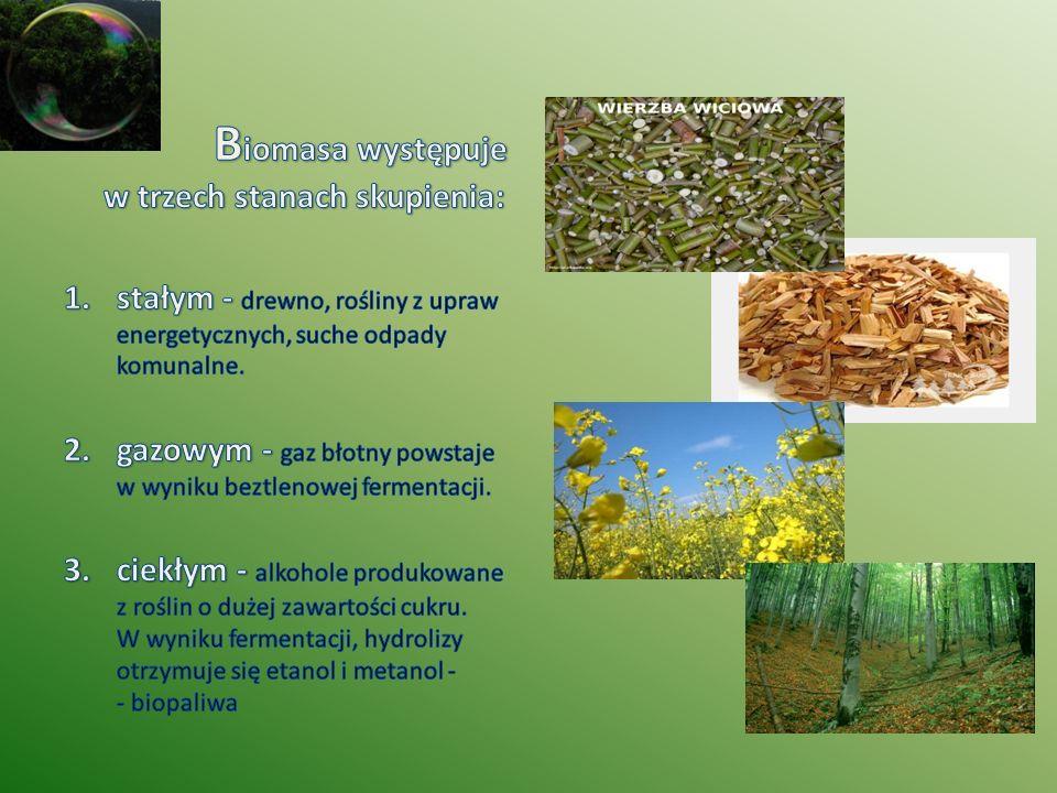 Biomasa występuje w trzech stanach skupienia: