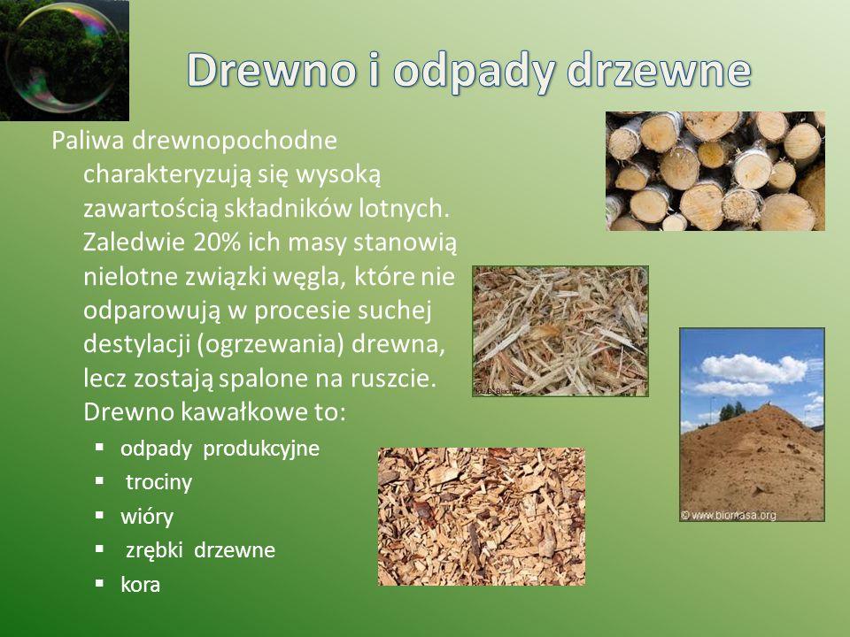 Drewno i odpady drzewne