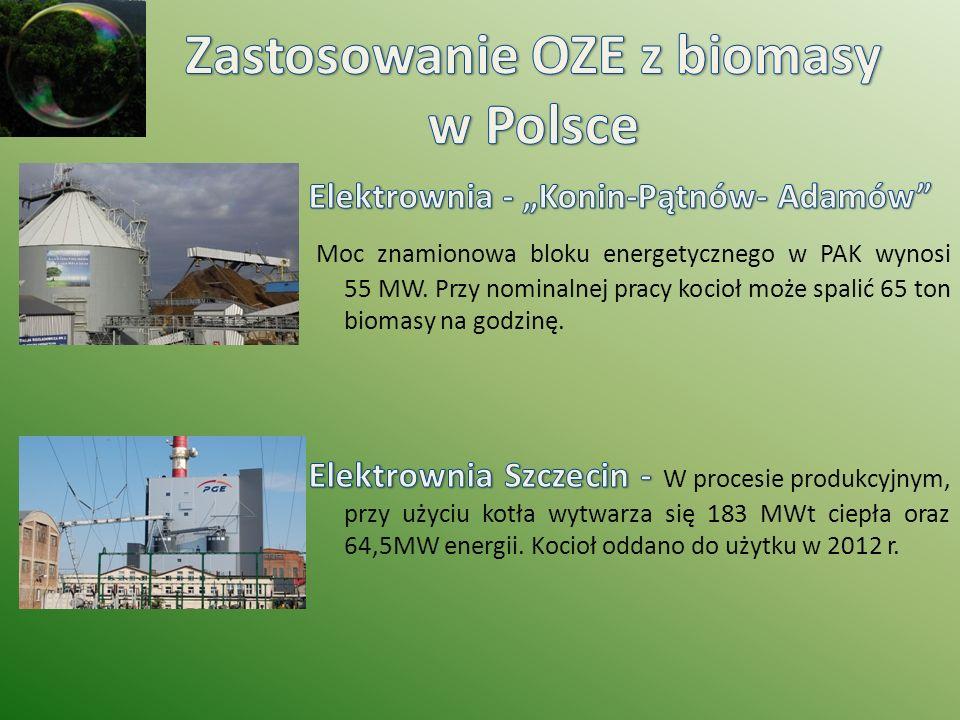 Zastosowanie OZE z biomasy w Polsce
