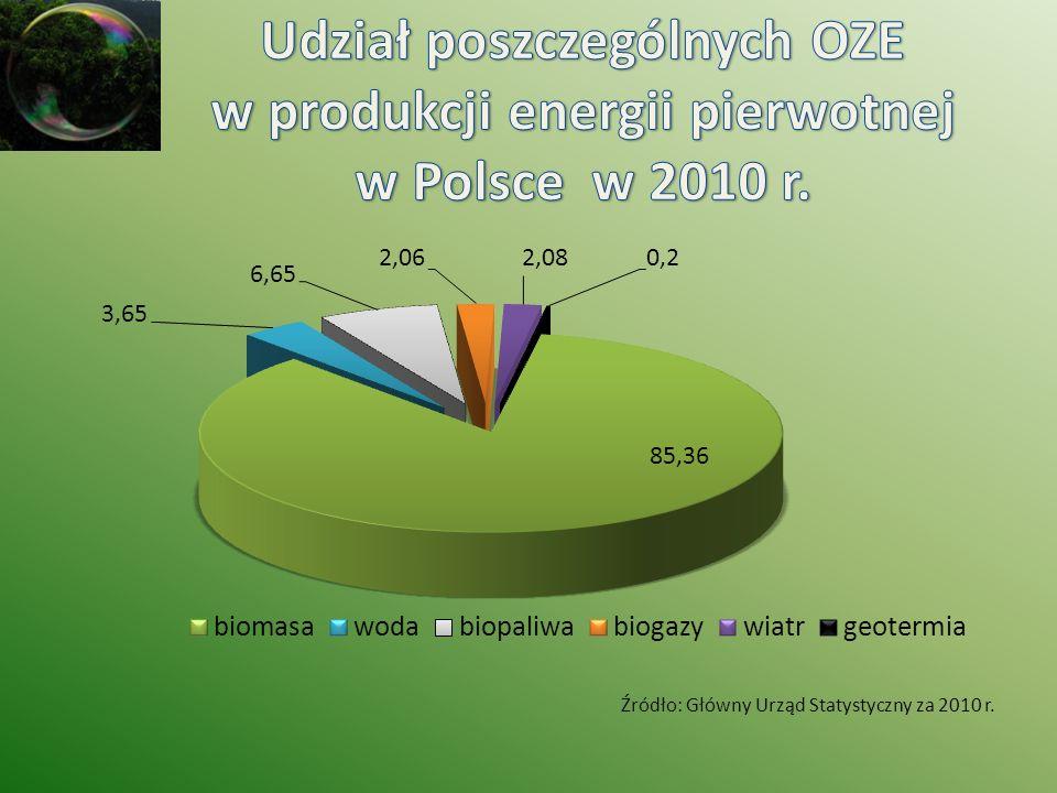 Udział poszczególnych OZE w produkcji energii pierwotnej w Polsce w 2010 r.