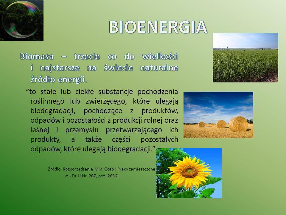 BIOENERGIA Biomasa – trzecie co do wielkości i najstarsze na świecie naturalne źródło energii.