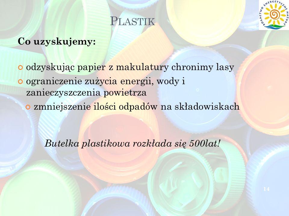 Plastik Co uzyskujemy: odzyskując papier z makulatury chronimy lasy