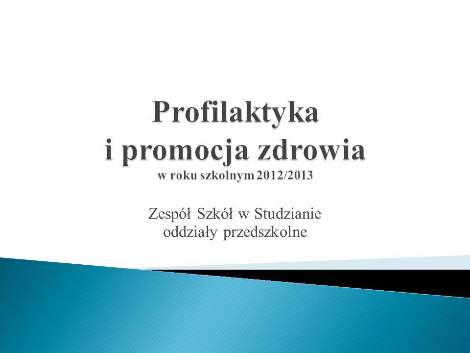 Profilaktyka i promocja zdrowia w roku szkolnym 2012/2013