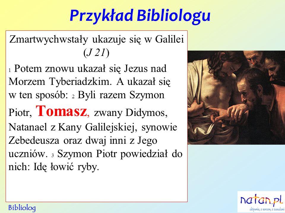 Zmartwychwstały ukazuje się w Galilei (J 21)