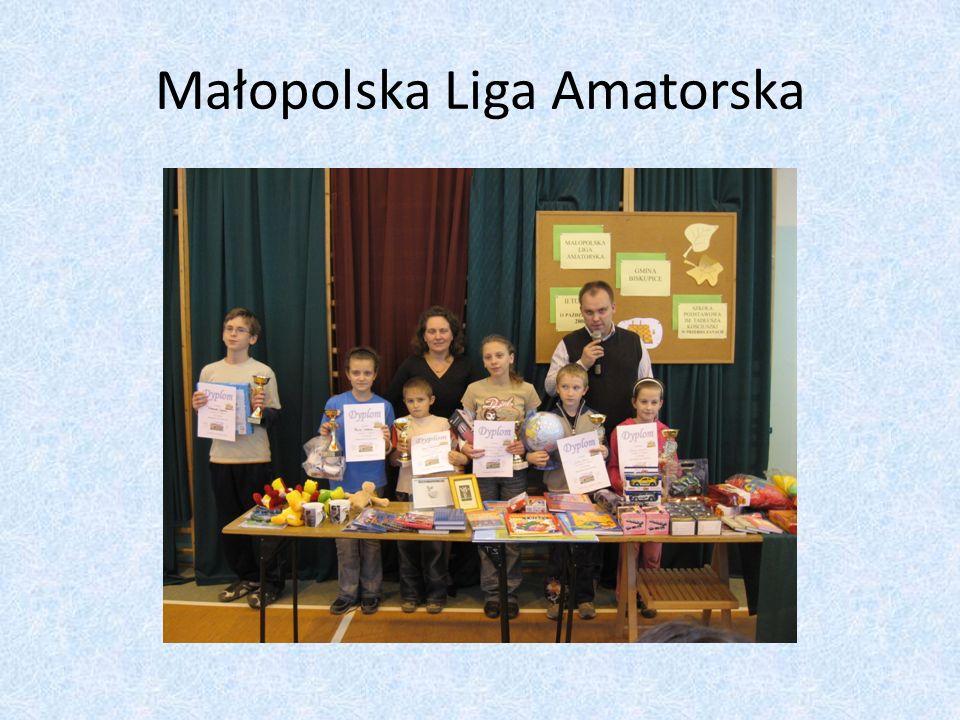 Małopolska Liga Amatorska